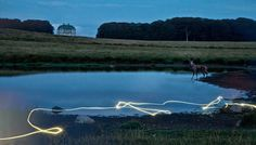 Connection by Per Morten Abrahamsen #photography #art #project #lightpainting