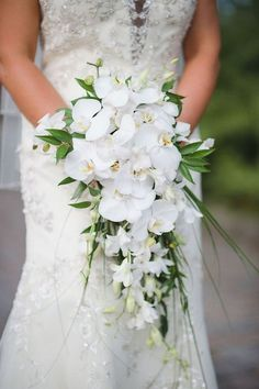 Bridal Wedding Portait with White Orchid Cascading Wedding Bouquet Picture by Tampa Bay Wedding Photographer Marc Edwards Photographs Bouquet En Cascade, Cascading Wedding Bouquets, Bride Bouquets, Flower Bouquet Wedding, Floral Wedding, Orchid Bridal Bouquets, Wedding White, White Orchid Bouquet, Cascading Flowers