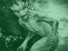 Lizard-Man of Scape Ore Swamp, said to inhabit the swamps of Lee County SC, reported first in 1988