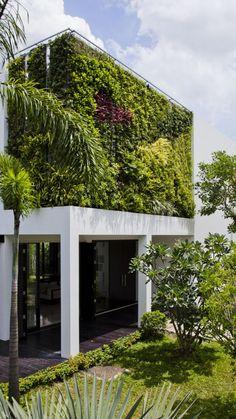 Adoptez l'Eco Attitude avec une façade végétalisée #ecoattitude