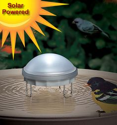 Solar Water Wiggler- entices birds to drink and bathe by creating gentle ripples in your birdbath.  The moving water prevents disease-carrying mosquitos from laying eggs in the would-be stagnant water.  The Solar Water Wiggler stores enough energy in a rechargeable battery to run the motor during the nighttime hours.