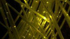 Uno studio dell'Università La Sapienza spiega come gli investimenti in banda ultra larga condizioneranno l'economia e il lavoro in Italia. Con tanti effetti positivi e qualche contro