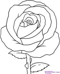 rose simple drawing draw step flowers pop culture outline easy drawings flower beginners