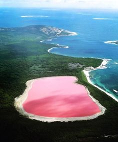 Lake Hillier is a pink-colored lake on Middle Island, the largest of the islands and islets that make up the Recherche Archipelago, Western Australia. From above the lake appears a solid bubble gum pink. It is such a significant distinguishing feature of the archipelago that air passengers often crane their necks to take a glimpse of it. The lake is about 600 meters long, and is surrounded by a rim of sand and a dense woodland of paperbark and eucalyptus trees. A narrow strip of sand dunes…