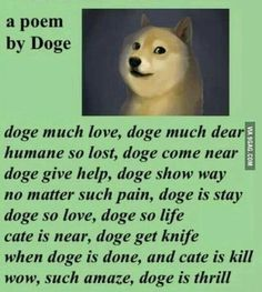 Much poem. Wow. Such doge