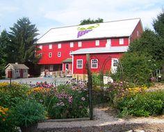 Adams County Winery near Gettysburg, PA.