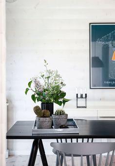 Forskellige planter samlet i krukker og vaser på en bakke på spisebordet