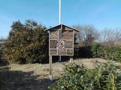 Zum Saisonstart wurde ein Insektenhotel gebaut. Foto: KGV
