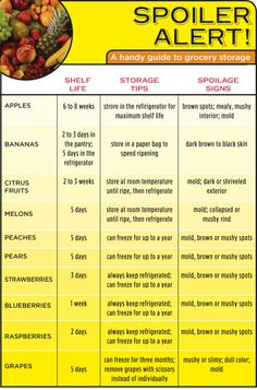 Spoiler Alert! A Handy Infographic Guide to the Shelf Life of Fruit - Houston - Restaurants and Dining - Eating Our Words