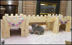 budgetbunny.ca 's bunny castle