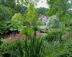 garden, Alan Titchmarsh, moisture-loving, plants, rain, soggy, bog plants