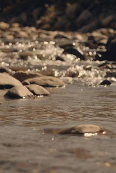 Quelques gouttes de rosée sur une toile d'araignée, et voilà une rivière de diamants…..     (Jules Renard)