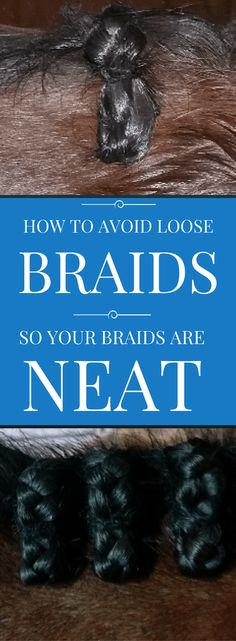 Learn How to Avoid Loose Braids so Your Braids are NEAT. Click through now to learn my pro tips for creating tighter, neater braids on your horse's mane.