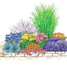 Drought Tolerant Sun Garden A – 1 Zebra Grass B – 1 Russian Sage C – 3 Cornflower D – 3 Dragon's Blood Sedum E – 1 Dwarf Gaillardia F – 2 Select Blue Festuca G – 3 Blue Fragrant Lavender H – 3 Gay Butterflies Butterfly Plant Full Sun Garden, Lawn And Garden, Spring Hill Nursery, Butterfly Plants, Drought Tolerant Landscape, Patio Plants, Arte Floral, Plantation, Yard Landscaping