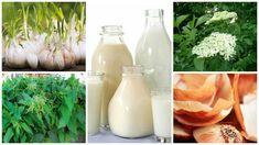 Stropirea legumelor cu substante naturale. Legume sanatoase economic si simplu