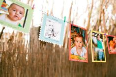 Keegan's first birthday party at a petting zoo photography by dez and tam month photo banner