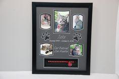 "16' x 20"" Cat Memorial Shadow Box Display for Jake.  R.I.P. furball : )  $150.00 w/ shipping"