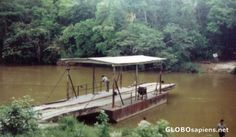 San Ignacio Belize | San Ignacio Belize - Ferry Bridge near San Ignacio - GLOBOsapiens