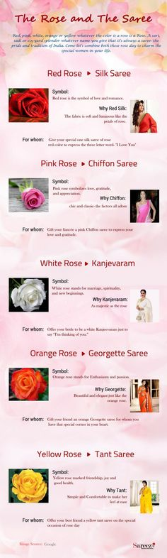 The Rose and The Saree