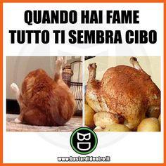 Tagga i tuoi amici e #condividi #bastardidentro #perfettamentebastardidentro #pollo #gatto www.bastardidentro.it