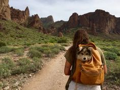 Travel with a buddy puppy in a backpack adventure explore the desert Arizona like a Bohemia. Adventure Awaits, Adventure Travel, Adventure Quotes, Into The Wild, Wanderlust, Kayak, To Infinity And Beyond, Adventure Is Out There, Oh The Places You'll Go