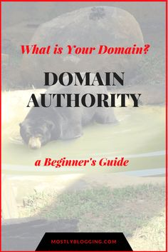 This Is Why People Care About Domain Authority