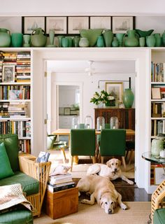 Like the book cases surrounding the doors and the green accents.