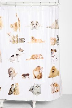 Raining Cats And Dogs | For The Home | Pinterest | Dog Shower, Bathroom  Organization And Bath