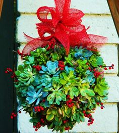 10 Ways to Use Succulents for the Holidays . The succulent kissing ball is a new twist on the traditional mistletoe version. Use these DIY instructions I whipped up a few years ago to help you craft one for your home, but use metal basket forms in a smaller size and more succulent clippings to alter it for this project