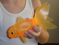 Amazon.com: Light-Up Color-Changing Koi Fish Toy: Toys & Games
