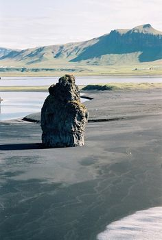 Dirholaey peninsula in Vik, Iceland. #coast #blacksand #travel #capeportland