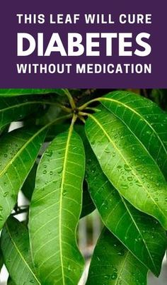 This Leaf will #Cure #Diabetes without Medication