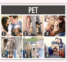 Seventh-Black scarf and one with each dog: Couple Photography Pet,