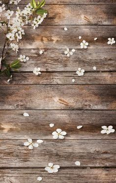Spring flower backdrop printed photo wallpaper photography backdrop newborn background D-9766