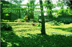jasa seni taman,relief,air terjun,kolam, taman minimalis,kolam renang di kediri-blitar-nganjuk-jombang-madiun-tulungagung