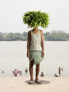 Picture of man with green plant on his head