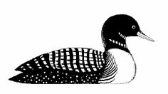 two loon clipart maine love pinterest rock art pyrography and rh pinterest com lion clip art black and white loom clip art
