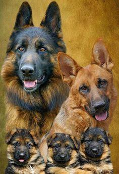 familia policial