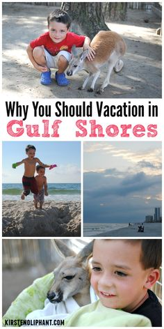 Why you should take a Gulf Shores Vacation with your family! One great reason? Kangaroos!!!