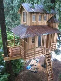 Seattle tree house Would love to have a tree house like this