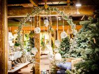 Kerstshow 2016 - Fotoalbums - Groencentrum Witmarsum, het tuincentrum in Friesland Pictures