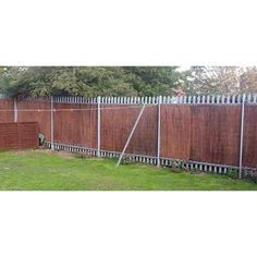 Chain Link Fence Privacy, Cheap Privacy Fence, Garden Privacy, Privacy Screen Outdoor, Privacy Screens, Modern Fence Design, Cedar Posts, Natural Fence, Dog Fence