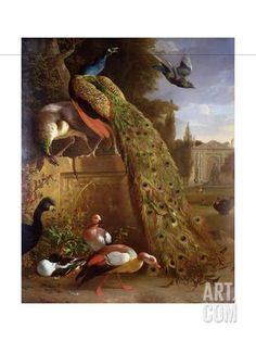 Peacock and a Peahen on a Plinth, with Ducks and Other Birds in a Park Giclee Print by Melchior de Hondecoeter at Art.com