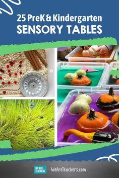 Sensory materials can be both engaging and calming. We've gathered our favorite sensory table ideas here. Check them out! Sensory Table, Sensory Bins, Sensory Activities, Toddler Activities, Kindergarten Sensory, Preschool Science, Kindergarten Teachers, Sensory Lights, Toddler Play