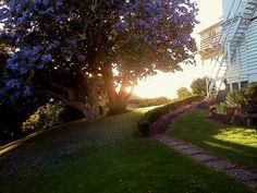 Epsom, Auckland NZ