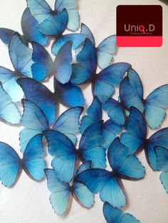 royal blue edible butterflies  BUY 29 get 3 FREE by uniqdots, $26.00. Make your cakes and cupcakes special by adding the many different sizes and shapes of butterflies from this company. People will love them.