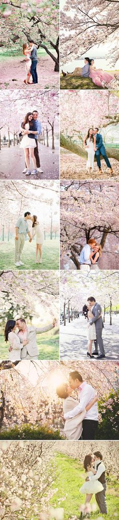 25 Stunning Cherry Blossom Wedding Photos You Will Love!
