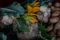 The very last zucchini flowers along with the first cauliflower from the garden sit in a crate outside the kitchen door