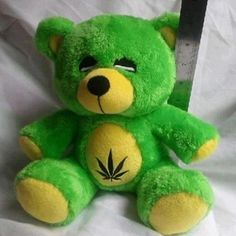 must have this teddy #high life #pothead #kushhhhh~