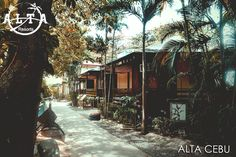 Under the sunny light in this summer season, enjoy the tropical garden here in Alta Cebu. Fresh Green, Cebu, Tropical Garden, Landscapes, Peace, Nature, Summer, Travel, Outdoor